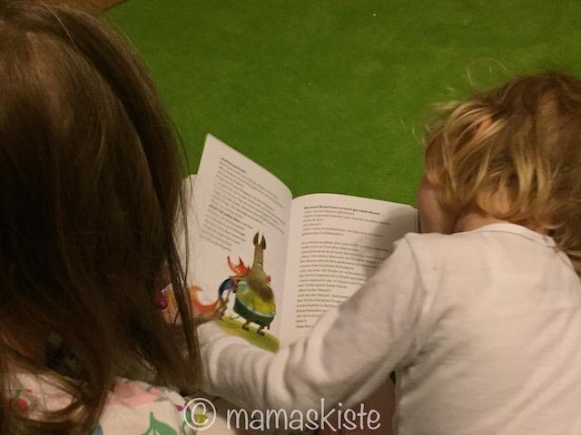 Buch Wildschwein:Fuchs