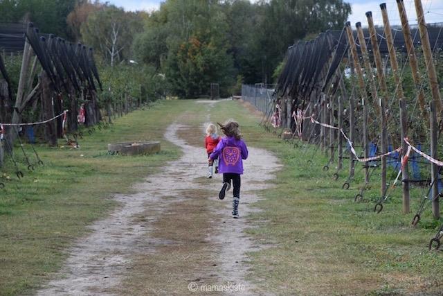 meine-5-tipps-fuer-die-erkaeltungszeit-rennen